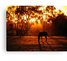 Feeding at Sunset Canvas Print