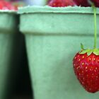 strawberry by theflashbulb