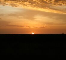 Golden Sunset by Cheyenne