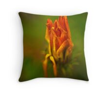SLEEPING DAISY Throw Pillow