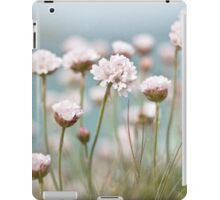 St. Ives Thrift iPad Case/Skin