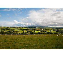 English field Photographic Print