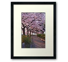 HC0169 Framed Print