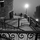 A stranger in the fog by TaniaLosada