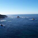 Big Sur Coast by Greg Schroeder