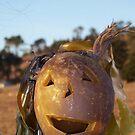 Kelp O'Lantern by Greg Schroeder