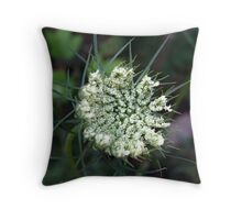 Becoming Queen Anne's Lace Throw Pillow