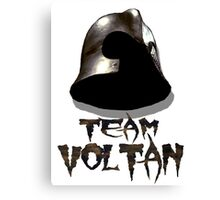 TEAM VOLTAN - Hawk the Slayer Canvas Print