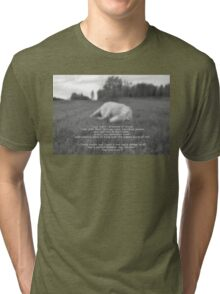 Sleeping White Horse Ranch Field Equine B&W Photo  Tri-blend T-Shirt