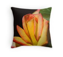 Legal Tint Throw Pillow