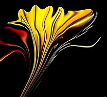 Tiger Lily Abstract by Darlene Lankford Honeycutt