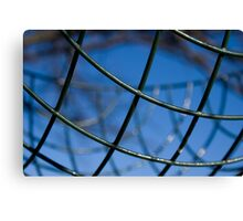 Wire Basket Canvas Print