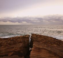Freshwater Headland I by Kelly Robinson