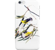 Vintage cute bright yellow and black birds iPhone Case/Skin