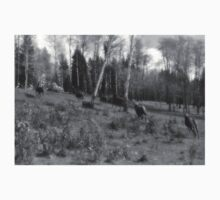 Horse Herd Running in Wooded Pasture on BC Ranch Kids Clothes