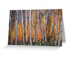 Bushfire - today, yesterday and tomorrow Greeting Card