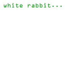 Follow the white rabbit by RootsofTruth