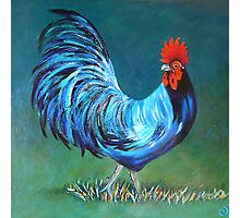 The Magic Rooster Photographic Print