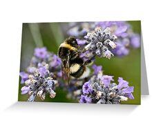 Bumble Beeeeeeeeee Greeting Card
