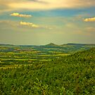 Looking Towards Roseberry Topping. by Trevor Kersley