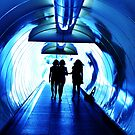Blue Tunnel by oddoutlet