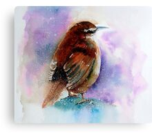 """Winter Wren"" Canvas Print"