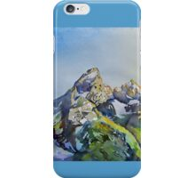Grand View iPhone Case/Skin