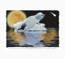 """The Celestial Child"" (Harp Seal) Kids Clothes"