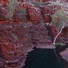 Karijini National Park - Knox Gorge by iandsmith