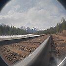 Rocky Mountain Railroad. by veneer