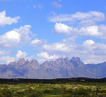 Organ Mountians New Mexico by CynLynn