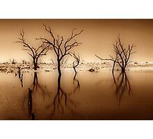 Tenindewa Road - III Photographic Print