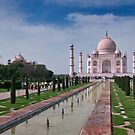 The Taj Mahal, Agra, India by Darren Newbery