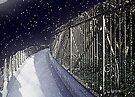 A Winter Walk through Washington by RC deWinter