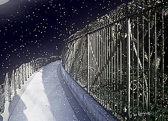 A Winter Walk through Washington by RC deWinter