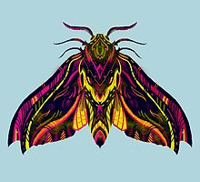 Elephant Hawk Moth by Karl James Mountford