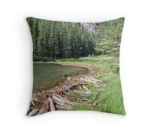 Nature's Engineers Throw Pillow