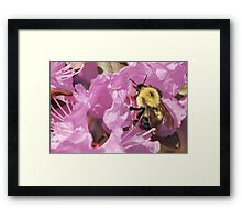 Bumble Bee Wings Framed Print