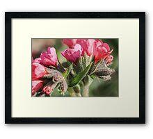 Fuzzy Flowers Framed Print
