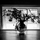 Vase In Window by Roger Miller