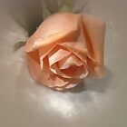 Floral by Ree  Reid