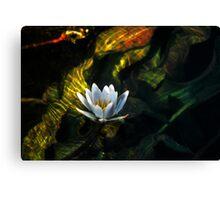 Okavango Lily Canvas Print