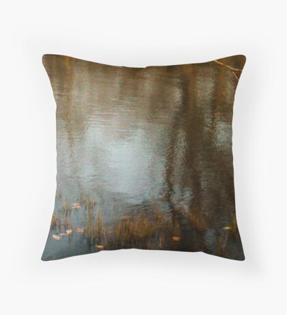 Reflection On Beaver Lake Throw Pillow