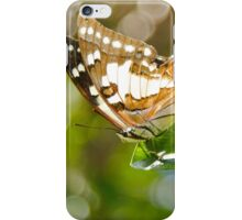 Tailed Emporer Butterfly iPhone Case/Skin