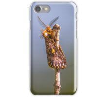 Epicoma Moth iPhone Case/Skin