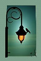 Night Song by pat gamwell