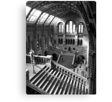 Inside the Natural History Museum, London Canvas Print
