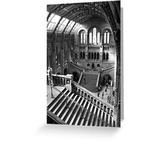 Inside the Natural History Museum, London Greeting Card