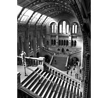 Inside the Natural History Museum, London Photographic Print