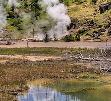Yellowstone Steamworks by Terence Russell